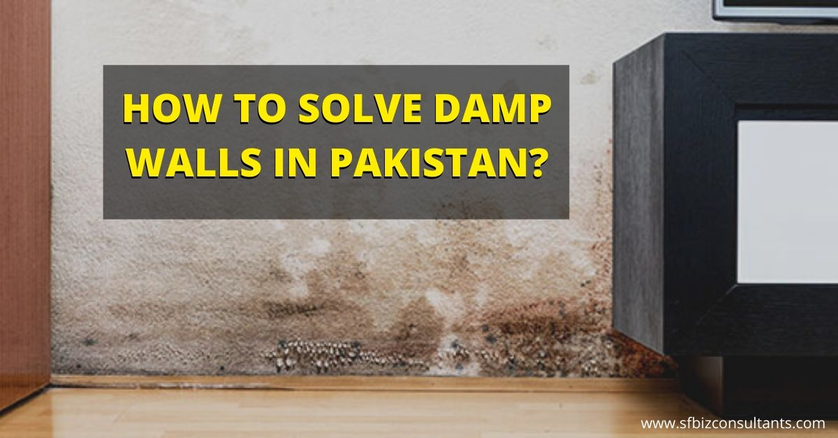 How to Solve Damp Walls In Pakistan?